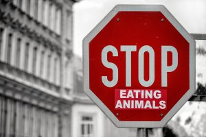stop eating animals go vegan stop sign