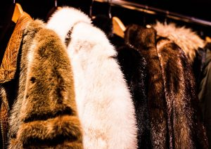 mink coats vegan fashion