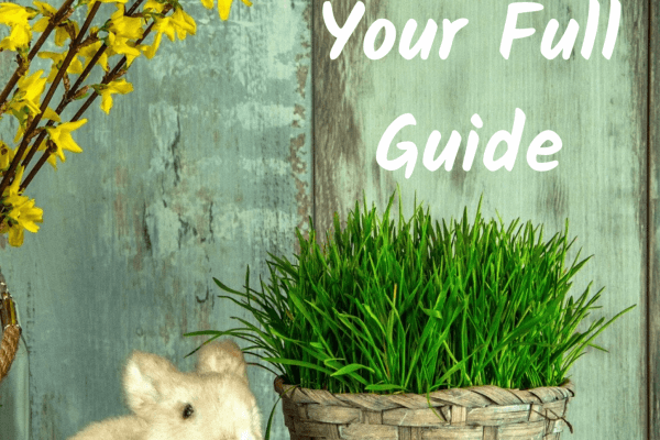 Vegan Easter Guide